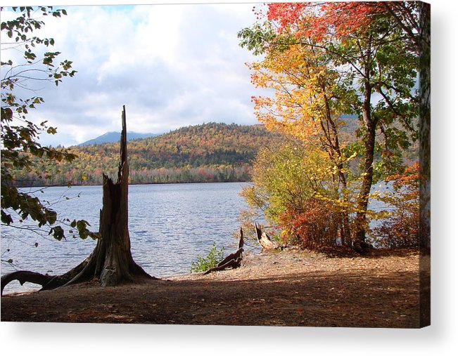 Acrylic Print featuring the photograph Fall Arrival by Chandra Wesson