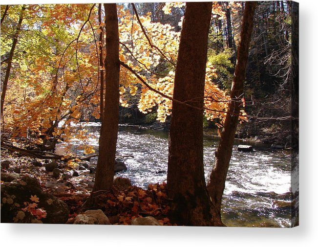 Fall Acrylic Print featuring the photograph Fall Flows by Reel Shots