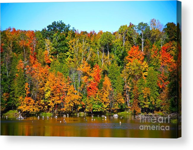 Fall Acrylic Print featuring the photograph Fall On The Water by Robert Pearson