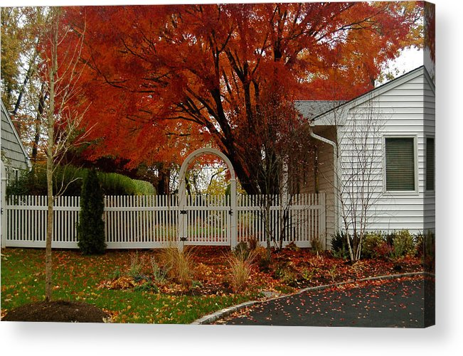 Fall Acrylic Print featuring the photograph Fall's Canvas by Mandy Wiltse