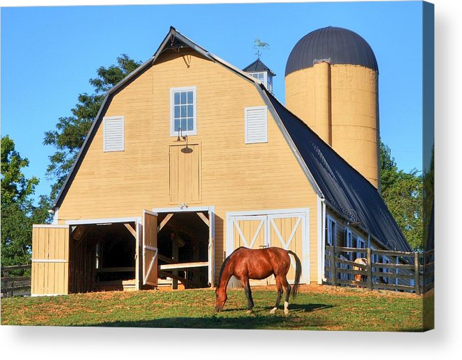 Farm Acrylic Print featuring the photograph Farm by Mitch Cat