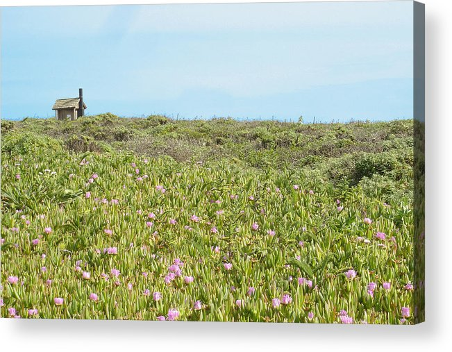 House Acrylic Print featuring the photograph Field Of Flowers by Michael Simeone