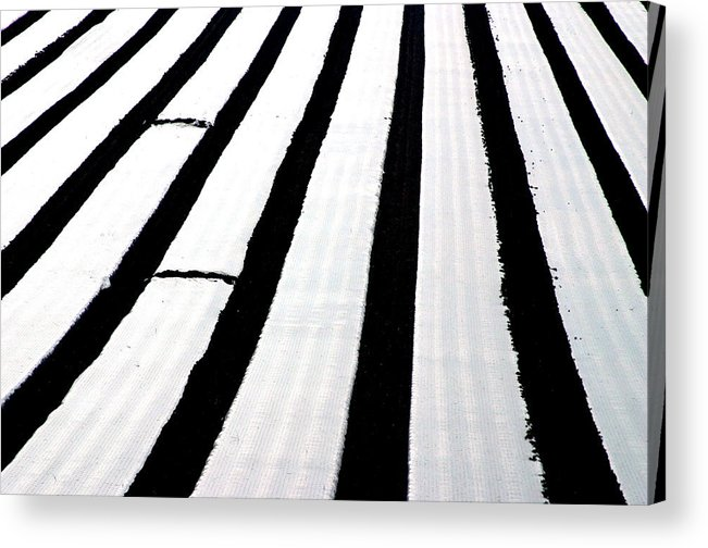 Photographer Acrylic Print featuring the photograph Fields Of Sheets by Jez C Self
