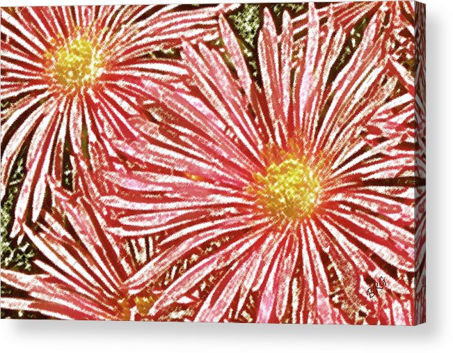 Ice Plant Flowers Acrylic Print featuring the photograph Floral Design No 1 by Ben and Raisa Gertsberg