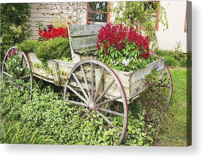 Wagon Acrylic Print featuring the photograph Flower Wagon by Margie Wildblood