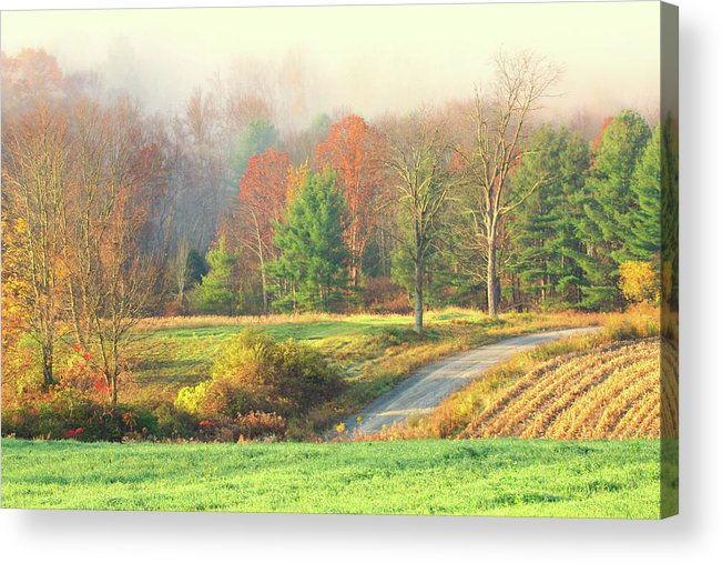 Landscape Acrylic Print featuring the photograph Foggy Morning by Terri Tiffany