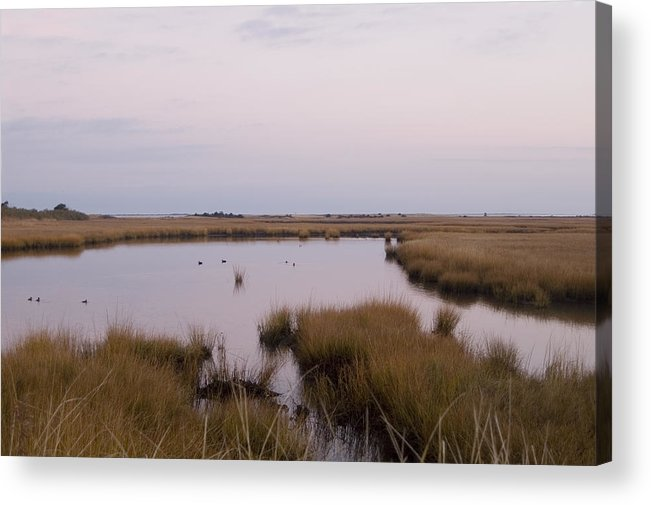 Nantucket Acrylic Print featuring the photograph Folgers Marsh Nantucket by Henry Krauzyk