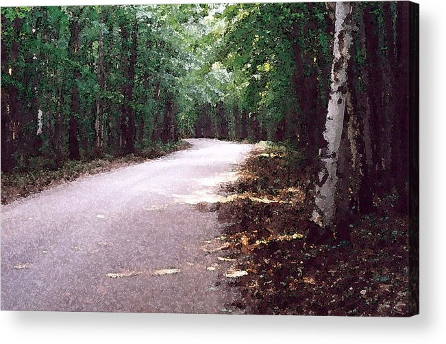 Forest Acrylic Print featuring the photograph Forest In The Road Wc 2 by Lyle Crump