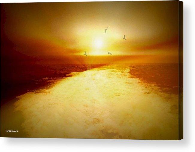 Ocean Acrylic Print featuring the photograph Freedom Escape by Linda Sannuti