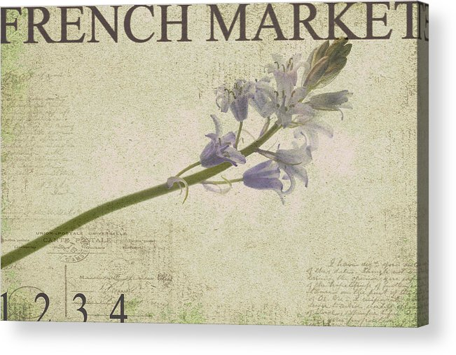 Purple Acrylic Print featuring the photograph French Market Series F by Rebecca Cozart