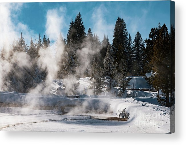 Yellowstone National Park Acrylic Print featuring the photograph Geyser Trail by Bob Phillips