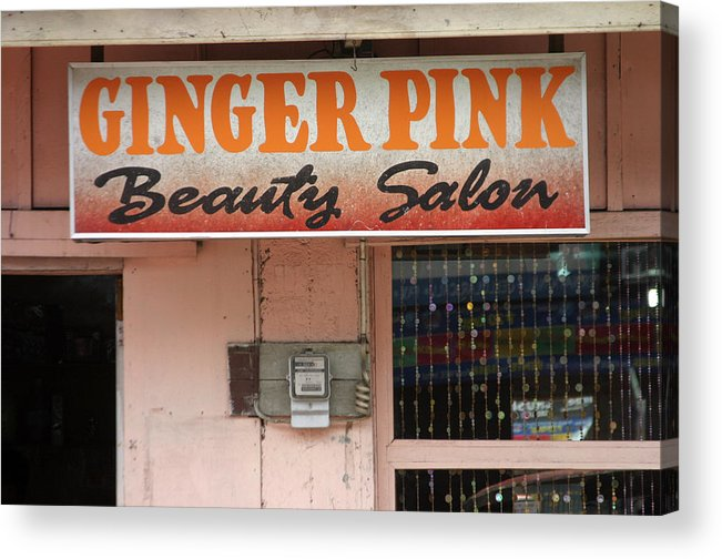 Photographer Acrylic Print featuring the photograph Ginger Pink by Jez C Self