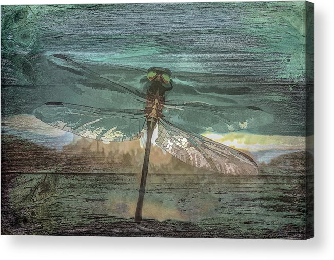 Dragon Acrylic Print featuring the photograph Glistening On Wood by Debra and Dave Vanderlaan