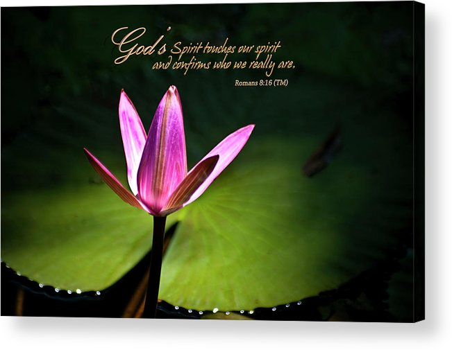 Water Lily Acrylic Print featuring the photograph God's Spirit by Carolyn Marshall