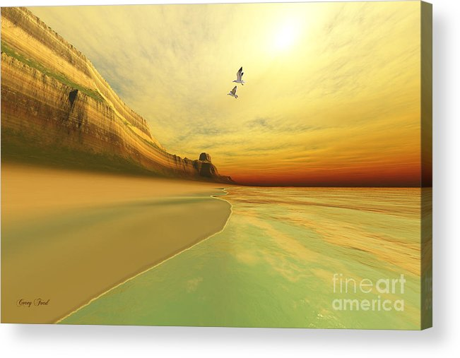 Seagull Acrylic Print featuring the painting Gold Coast by Corey Ford