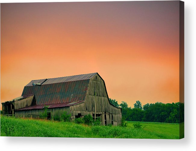 Landscapes Acrylic Print featuring the photograph Golden Glow Of Summer by Jan Amiss Photography