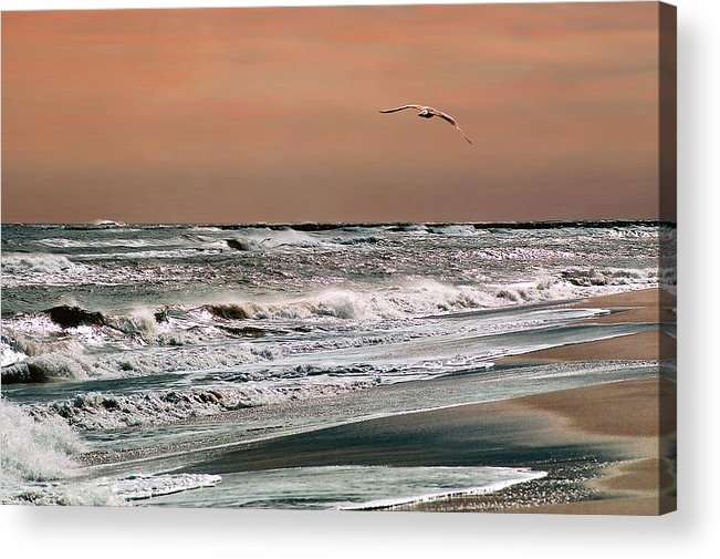 Seascape Acrylic Print featuring the photograph Golden Shore by Steve Karol