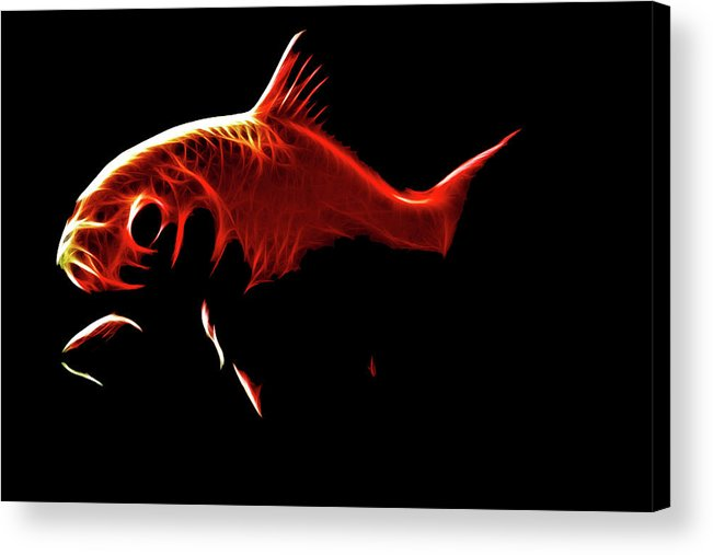 Goldfish Acrylic Print featuring the digital art Goldfish 1 by Tilly Williams