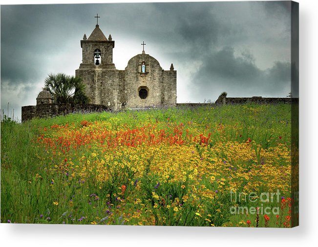 Landscape Acrylic Print featuring the photograph Goliad In Spring by Jon Holiday