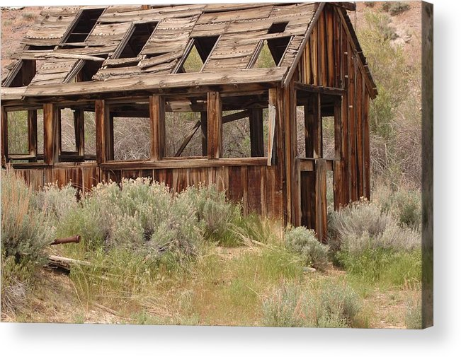 Acrylic Print featuring the photograph Gone by Lori Mellen-Pagliaro