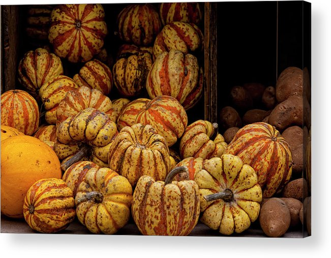 Gourds Acrylic Print featuring the photograph Gourds by Robert Ullmann