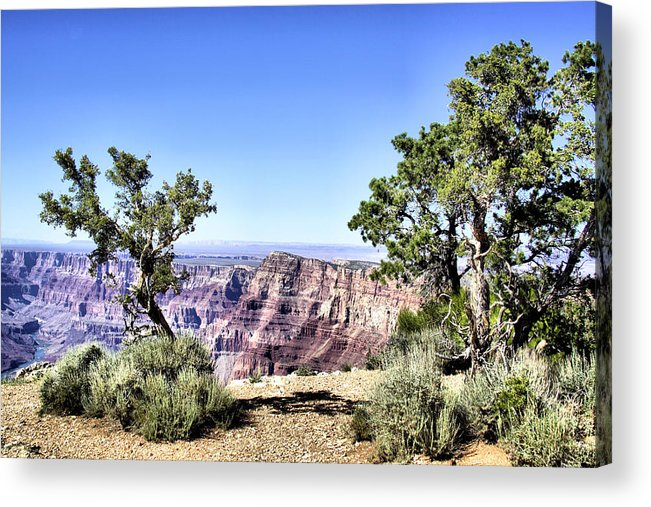 Grand Canyon Acrylic Print featuring the photograph Grand Canyon 2270 by Sharon Broucek