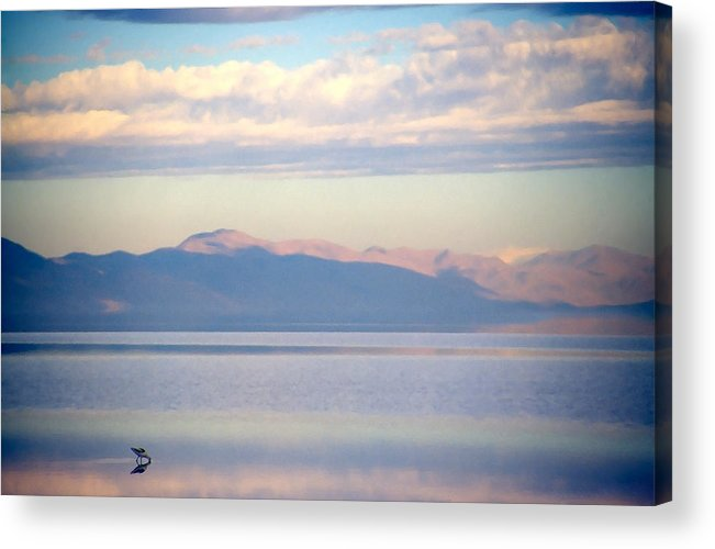 Lake Acrylic Print featuring the photograph Great Salt Lake Pastel Morning by Steve Ohlsen