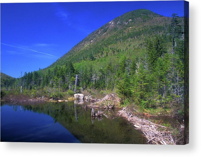 New Hampshire Acrylic Print featuring the photograph Greeley Pond by John Burk
