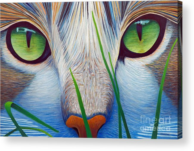 Cat Acrylic Print featuring the painting Green Eyes by Brian Commerford