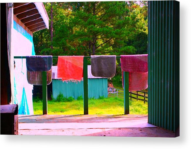 Colorful Acrylic Print featuring the photograph Hanging Out by Jill Tennison
