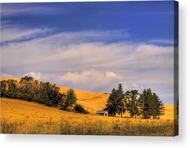 Landscape Acrylic Print featuring the photograph Harvested by David Patterson