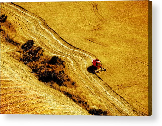 Combine Acrylic Print featuring the photograph Harvesting The Crop by Mal Bray