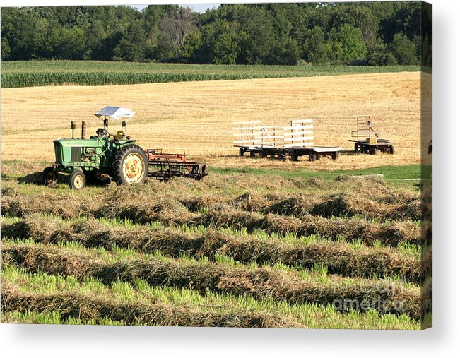 Agriculture Acrylic Print featuring the photograph Hey Hay by Alan Look