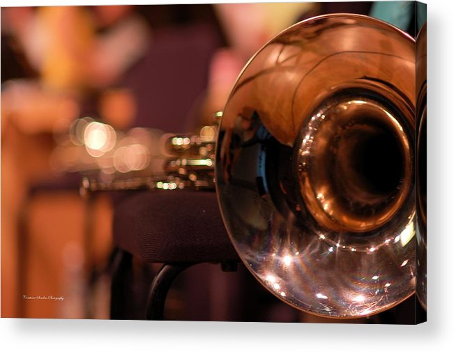 Horn Acrylic Print featuring the photograph Horn At Rest by Constance Sanders