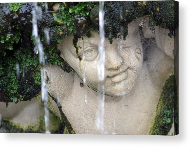 Jez C Self Acrylic Print featuring the photograph I M Dry by Jez C Self