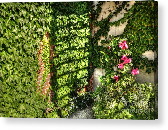 Courtyard Acrylic Print featuring the photograph In The Courtyard by Chris Fleming