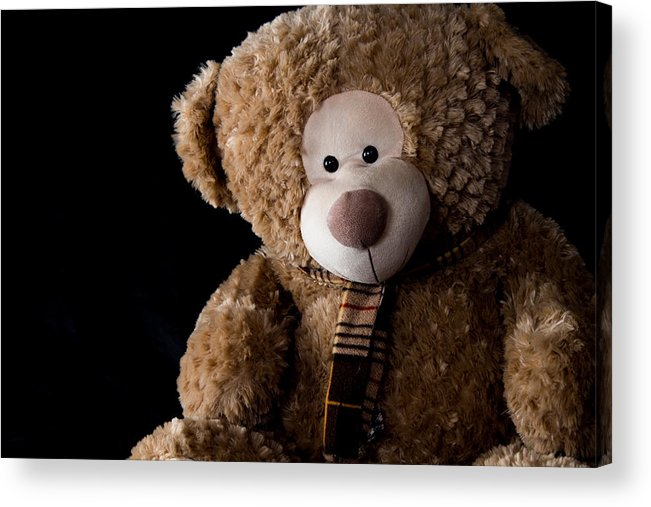 Bear Acrylic Print featuring the photograph Just A Bear by Vanora Naude
