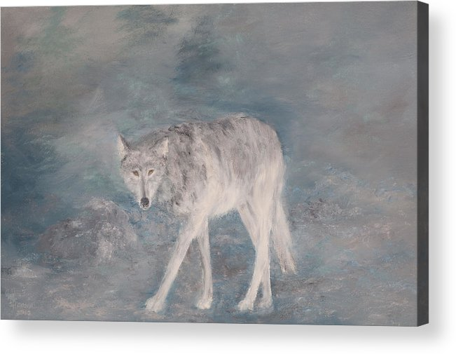 Wolf Acrylic Print featuring the painting Just Checking by Sunny Franson