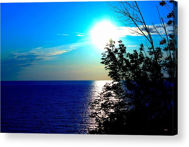 Acrylic Print featuring the photograph Lake Front by Robyn Doig