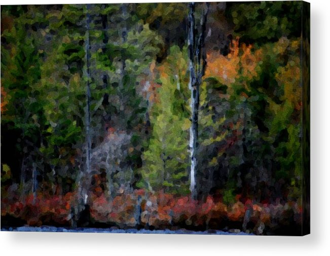 Digital Photograph Acrylic Print featuring the photograph Lakeside In The Autumn by David Lane