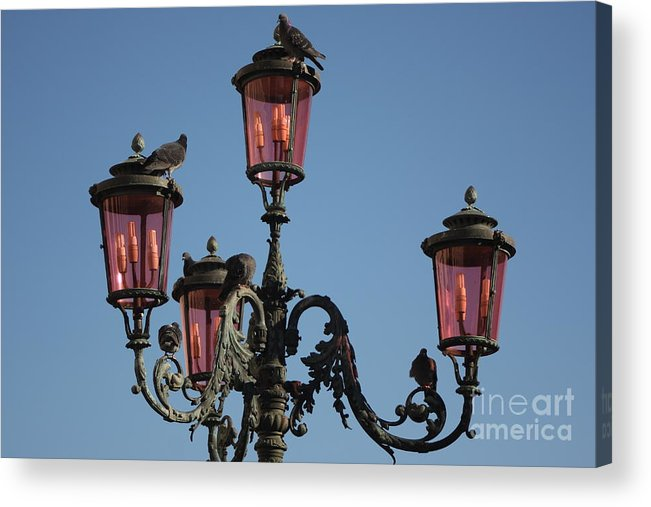 Venice Acrylic Print featuring the photograph Lamp Post In Venice With Pigeons by Michael Henderson