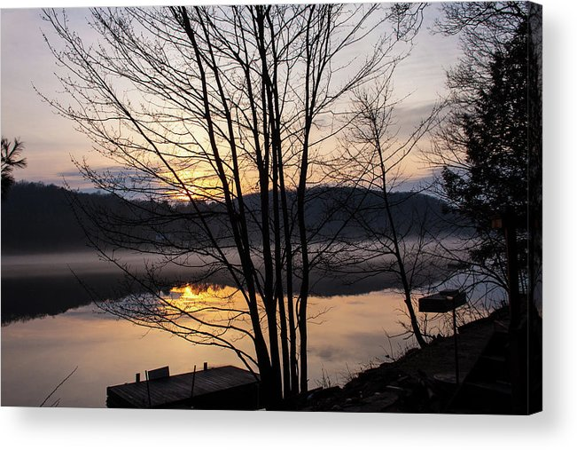 Tree Acrylic Print featuring the photograph Spring Sunset - New Beginnings Coming by Margaret Sarah Pardy