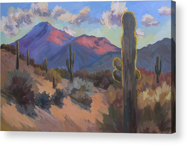 Tucson Acrylic Print featuring the painting Late Afternoon Tucson 2 by Diane McClary