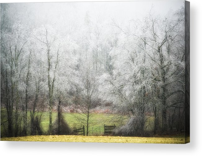 Ice Storm Acrylic Print featuring the photograph Late Fall Ice Storm Central Ma 2008 by Richard Danek