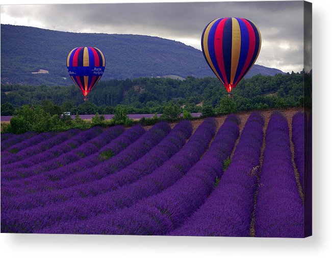 Lavender Fields Acrylic Print featuring the photograph Le Matin by John Galbo