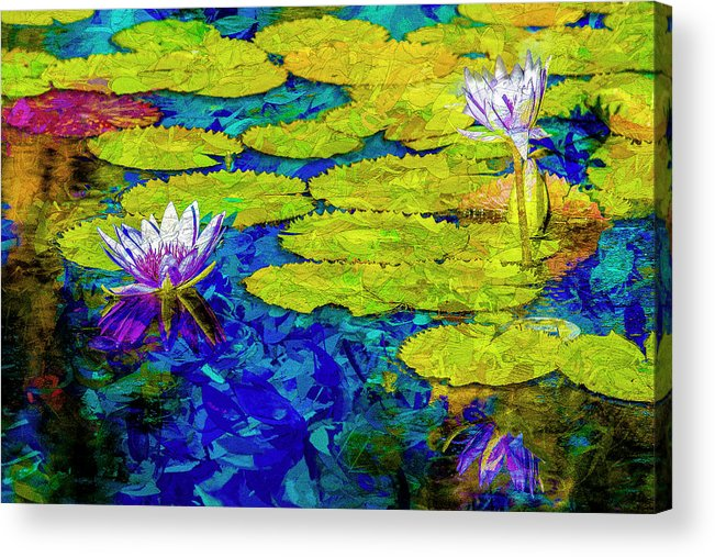 Photography Acrylic Print featuring the photograph Lilly by Paul Wear