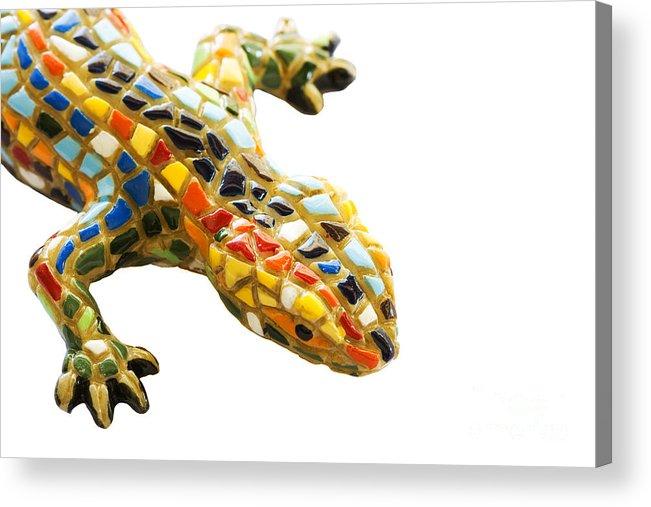 Architect Acrylic Print featuring the pyrography Lizard Souvenir By Antony Gaudi by Soultana Koleska