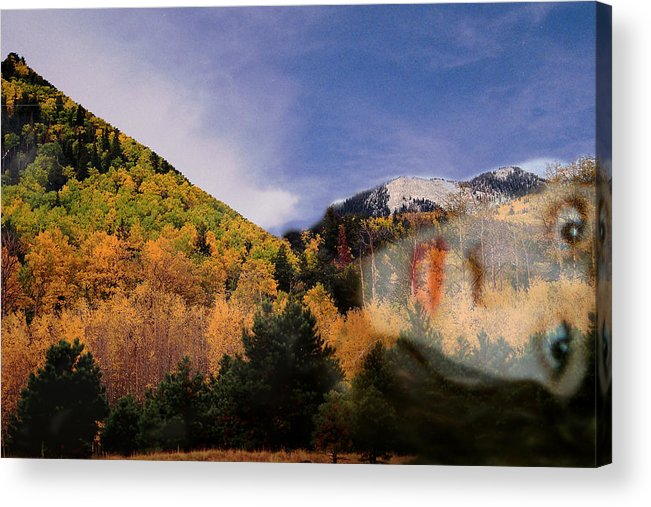 Lockett Meadow Acrylic Print featuring the photograph Lockett Meadow Looks Back by Richard Henne