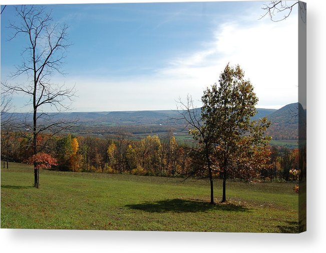 Fields Acrylic Print featuring the photograph Looking At Fall Colors In The Field by Richard Botts