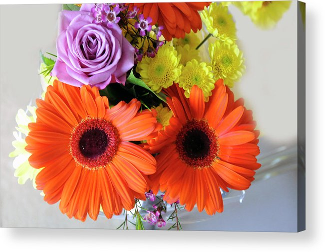 Digital Acrylic Print featuring the photograph Love Expressions by Vijay Sharon Govender